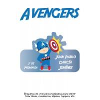 Escuela Vinil Avengers